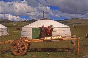 Devant une des yourtes de la famille mongole qui nous a reçus. Fromage en train de sécher. 28 juillet 1994