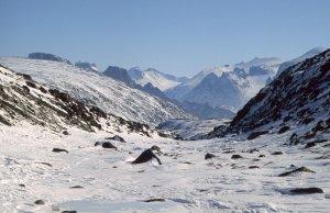 Montée de Clark Fjord vers les Bruce Mountains. Au fond, Sillem Island. 28 avril 2005.