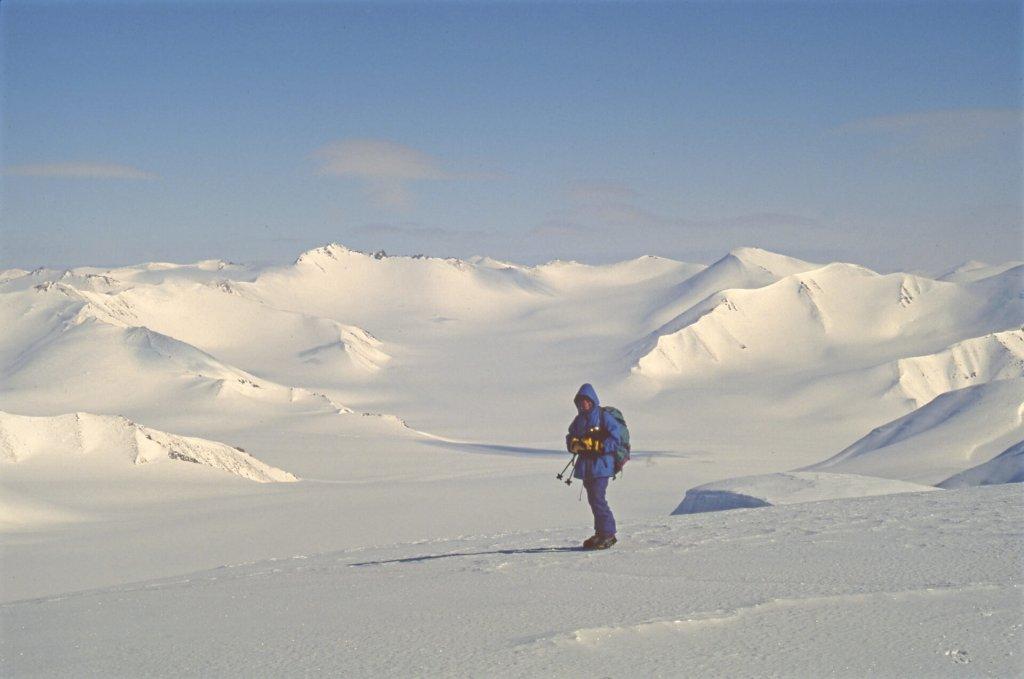 Béatrice ausommet sans nom situé à l'est du camp 11. 3 mai 1999.