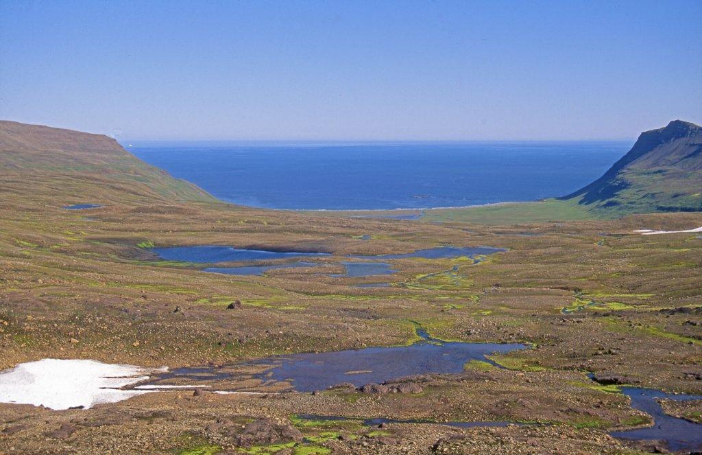 La côte du Hornstrandir.