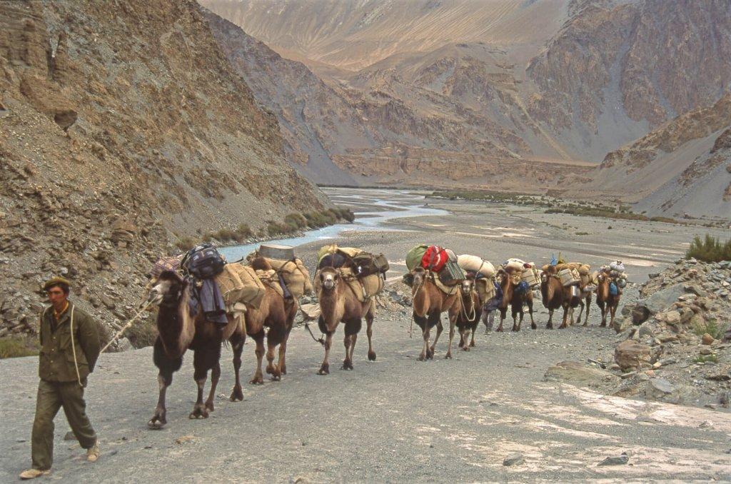 La caravane des chameaux dans la vallée de la rivière Yarkand. 13 septembre 1993.