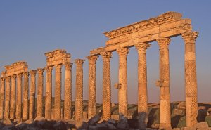 Apamée, grande colonnade torsadée