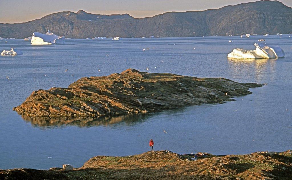 Sur l'île aux sternes dans la soirée du 4 août 2007.