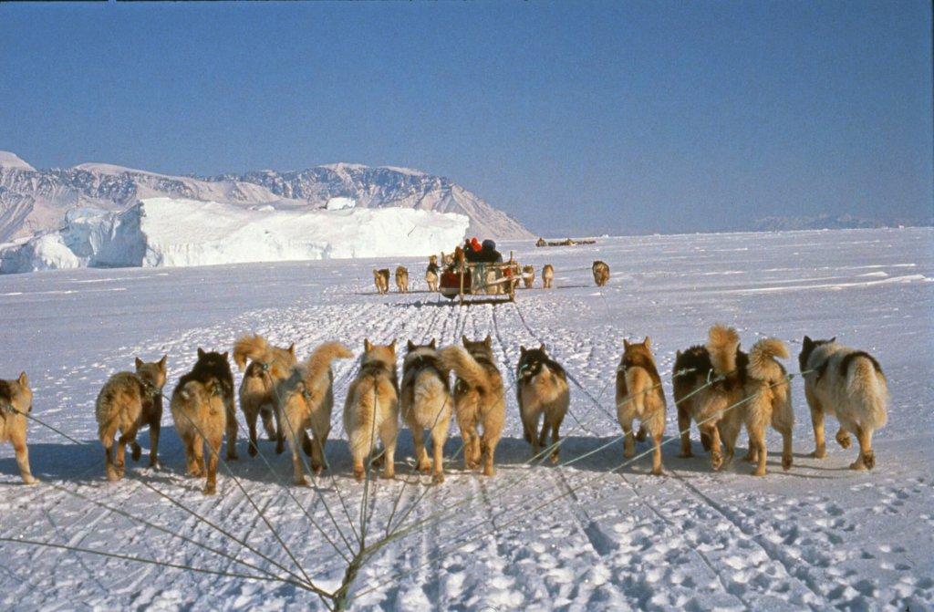 Voyage en traîneau à chiens. 9 avril 1991.