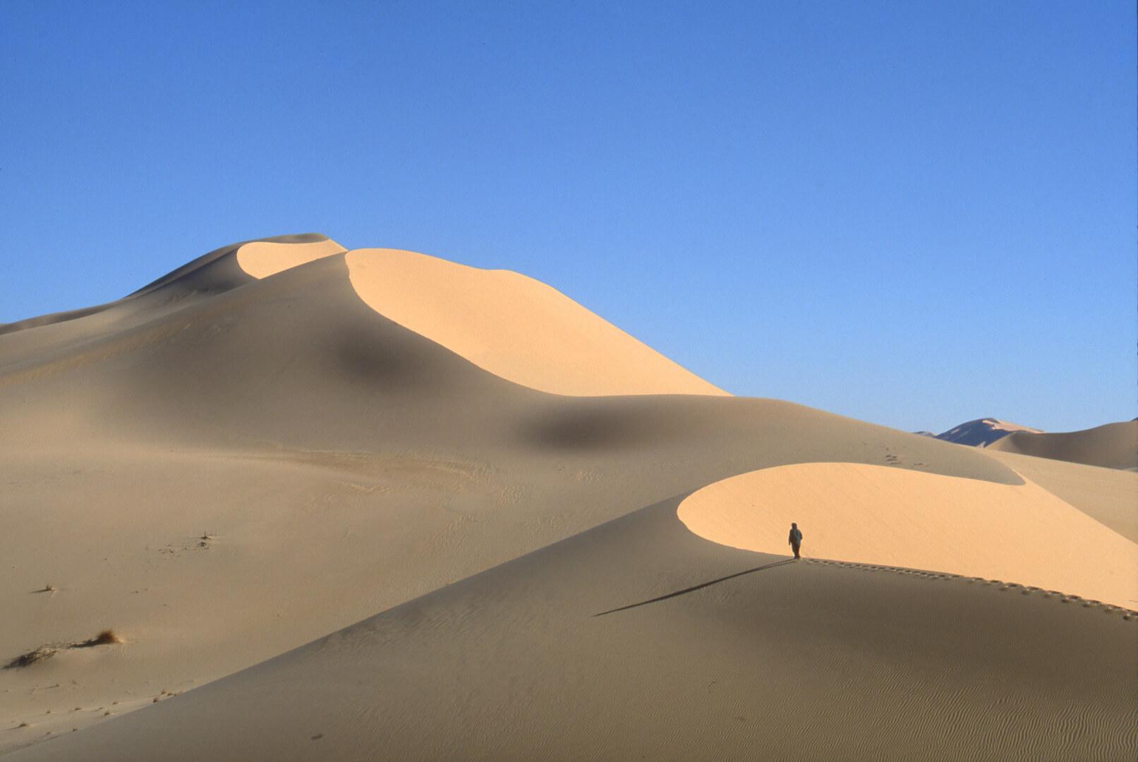 Dans les dunes de Tihodaïne