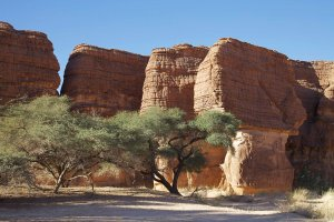 Le labyrinthe d'Oyo