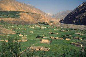 Le vilage de Shimshal. 16 Juillet 1995.