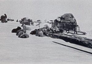 Les traîneaux prêts pour les dernières étapes avant le Pôle Sud.