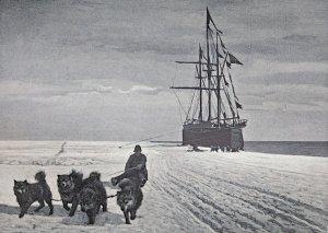 Embarquement du matériel et des chiens à la baie des Baleines - Janvier 1912.