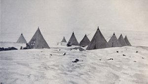 Le camp des chiens à Framheim - Mars 1911.