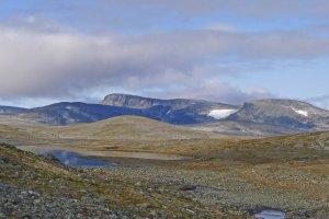 Le Dovrefjell entre Amotdalshytta et Grøvudalshytta - 2 septembre 2019